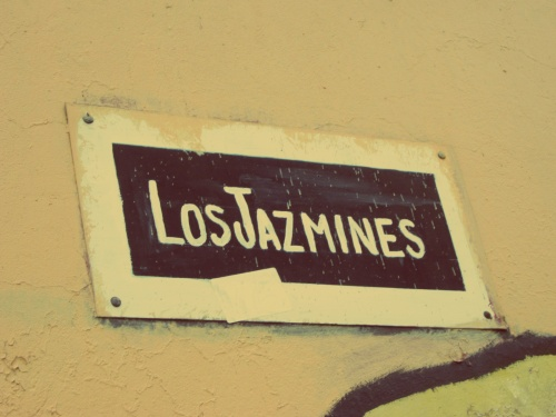 Calle Los Jasmines - Santiago - Chile - Mochilão América do Sul
